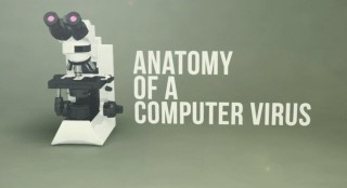 Anatomy of a Computer Virus
